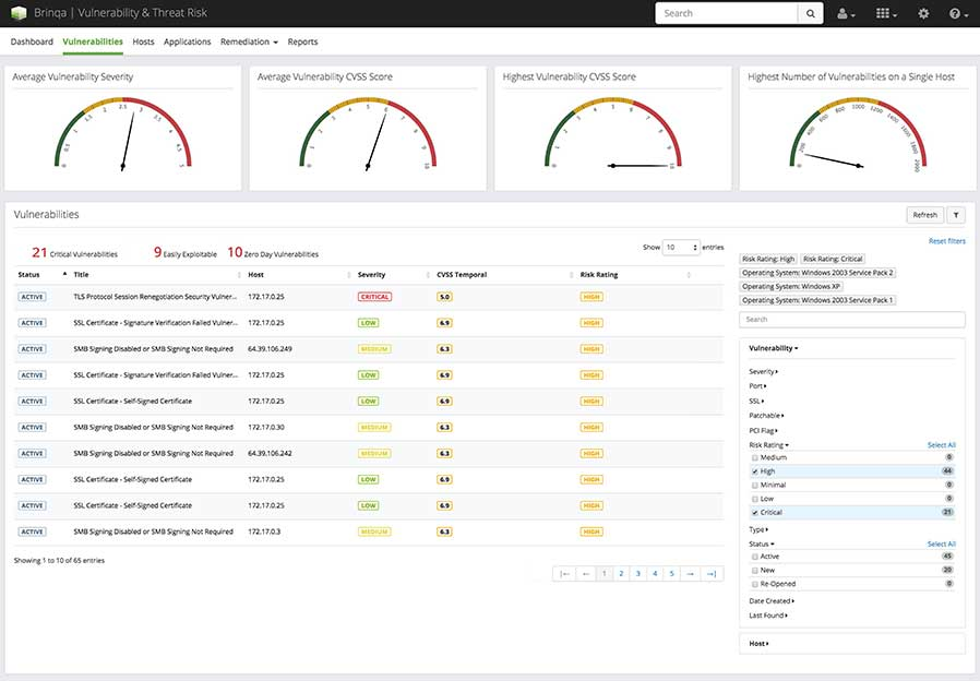 Brinqa Vulnerability Analysis screenshot
