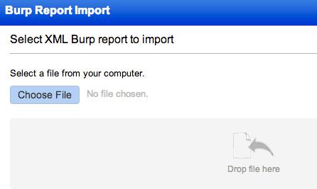 Burp Report Screenshot