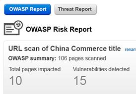 OWASP Report Screenshot