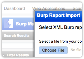Qualys Web Application Scanning Burp Report Screenshot